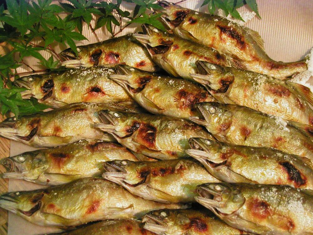 千曲川の味 鯉西イメージ
